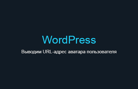 Как вывести URL-адрес аватара авторизованного пользователя в WordPress?