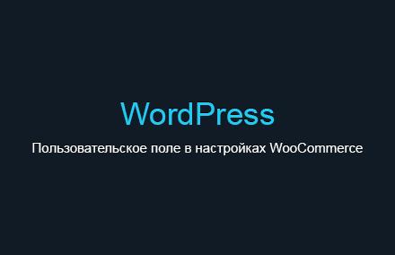 Добавляем пользовательское поле в настройки WooCommerce