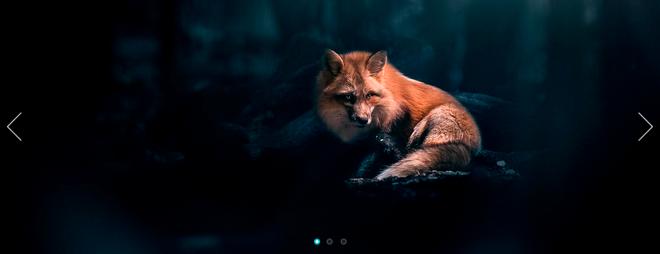 Jssor Slider – легкий и адаптивный слайдер фотографий для сайта на jQuery